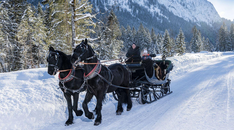 Pferdeschlittenfahrt mit der Familie @Achensee Tourismus